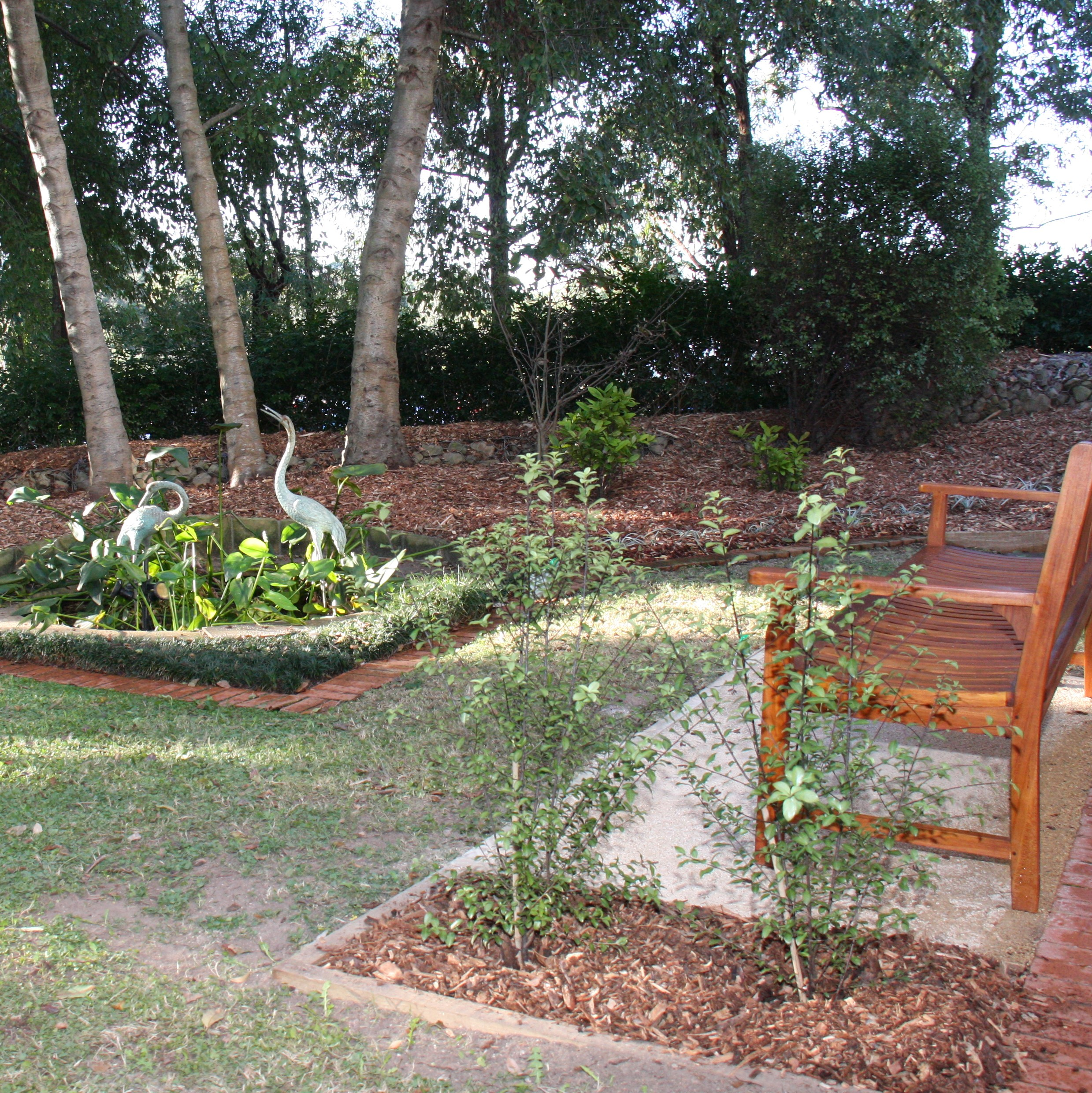 Jacaranda Lodge Meditation Garden